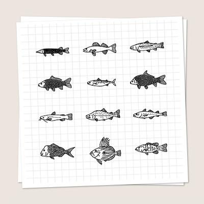 Iconen Vissen